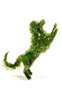 Glasshunde // Marta Klonowska